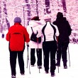 Nordic walking in winter — Stock fotografie