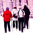Nordic walking en hiver — Photo