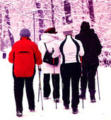 Nordic walking in winter — Stock Photo