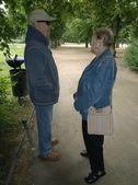 пожилые супружеские пары, в парке — Стоковое фото