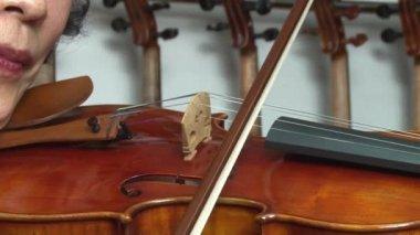 Violin — Stock Video