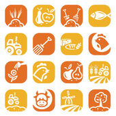 Color agriculture and farming icons — Stock Photo