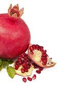Pomegranate on a white background — Stock Photo