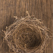 Nest on wooden boards — Stock Photo