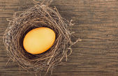 Egg in a nest on wooden boards — Stock Photo