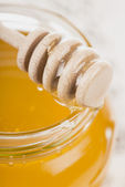 Honey bank on a white background — Stock Photo