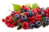 Handful of berries — Foto de Stock