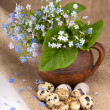 Quail eggs and flowers — 图库照片