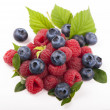 Many blueberries & raspberries. — Stock Photo #24482215