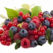Handful of berries — Stock Photo