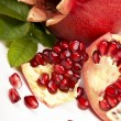 Stock Photo: Fresh, juicy pomegranate