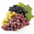 Black, green, red bunch of grapes close up, on white background, — Stock Photo