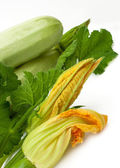 Fresh vegetable marrow with green leaf — Stock Photo