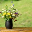 Beautiful bouquet of bright wildflowers — Stock Photo #27690585