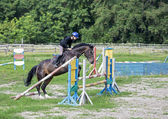 Junge und pferd — Stockfoto