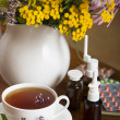 Still life from medicinal herbs, herbal tea and medicines — Stock Photo