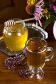 Bodegón de hierbas medicinales, miel, té de hierbas — Foto de Stock