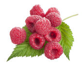 Ripe raspberry with green leaf — Stock Photo