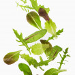 Green lettuce salad leafs — Stock Photo #34172851