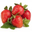 Strawberries berry — Stock Photo