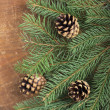 Frame from branch of Christmas tree on old wood — Stock Photo
