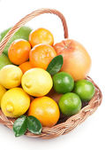 Fresh citrus fruit with leaves in a wicker basket — Stok fotoğraf