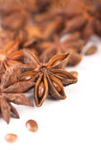 Anise isolated — Stock Photo