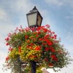 çiçek sepeti üzerinde eski bir sokak lambası — Stok fotoğraf
