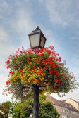Flower basket on an old lamp post — Stock Photo