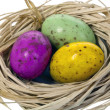 Easter eggs isolated on white. - Stock Photo