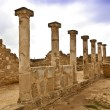 The Archaeological Helenistic and Roman site at Kato Paphos in Cyprus. — Stock Photo #44021901