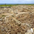 The Archaeological Helenistic and Roman site at Kato Paphos in Cyprus. — Stock Photo #44035979