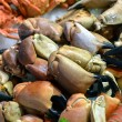 Royalty-Free Stock Photo: Crab claws