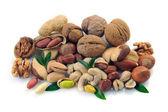 Uppsättning av nötter på en vit bakgrund — Stockfoto