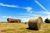 Farmers field with hay bales — Stock Photo