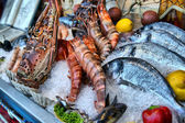 Showcase of seafood — Stock Photo