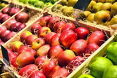Red and green apple fruits — Stock Photo