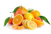 Set of citrus fruit with leaves — Stockfoto