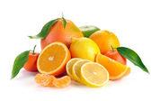 Set van citrusvruchten met bladeren — Stockfoto