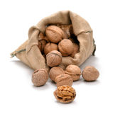 Walnuts and a bag — Stock Photo