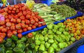 Viele verschiedene ökologische Gemüse — Stockfoto