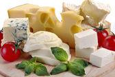 Set of cheese — Stock Photo