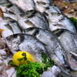 Стоковое фото: Showcase of seafood in semarket