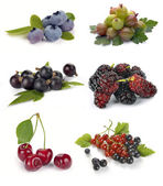 Set of different berries — Stock Photo