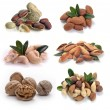 Set of nuts — Stock Photo #22905386
