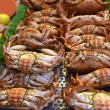 Fresh crabs - Stock Photo
