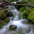 Flowing water in the gorge — Stock Photo