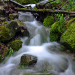 Flowing water in the gorge — Stock Photo #26357383