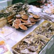Showcase of seafood — 图库照片