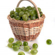 Gooseberries in a basket — Stock Photo